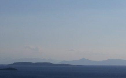 eilandjescultuur in organisaties